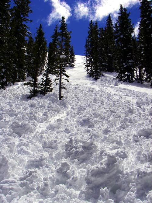 The avalanche in Silver Fork