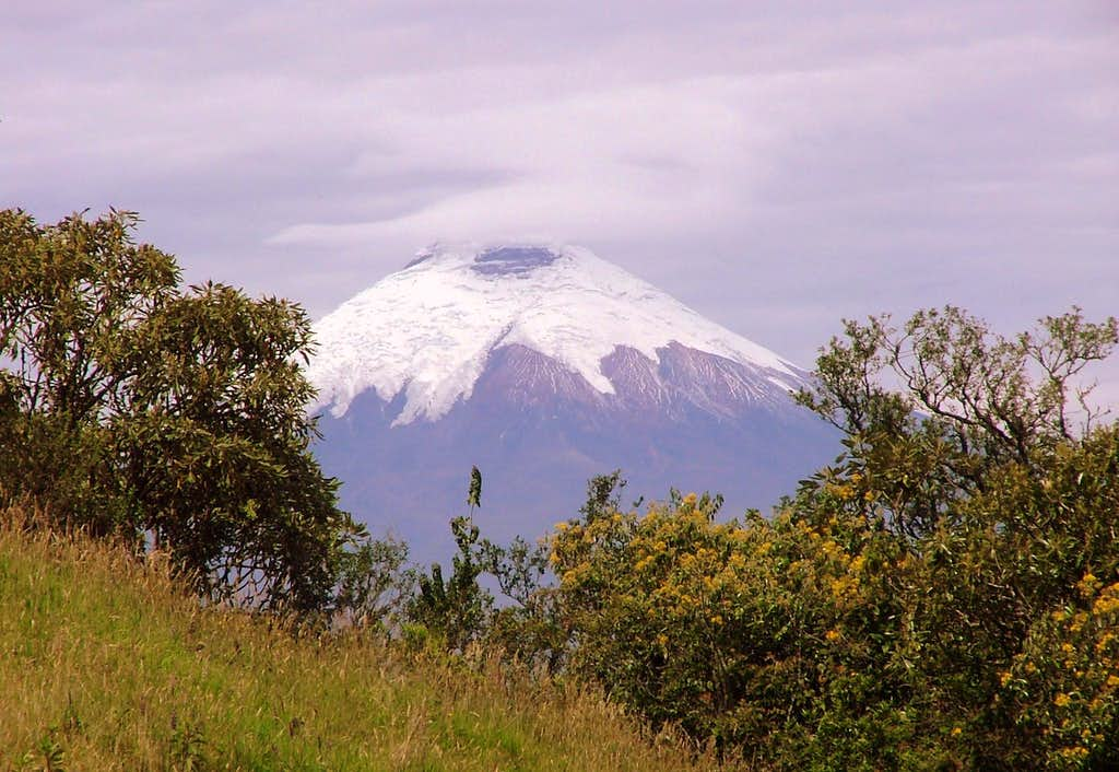 Cotopaxi as seen from Ilaló.