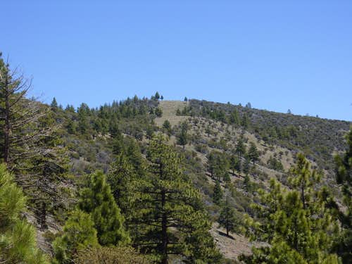 Dry Pond Peak