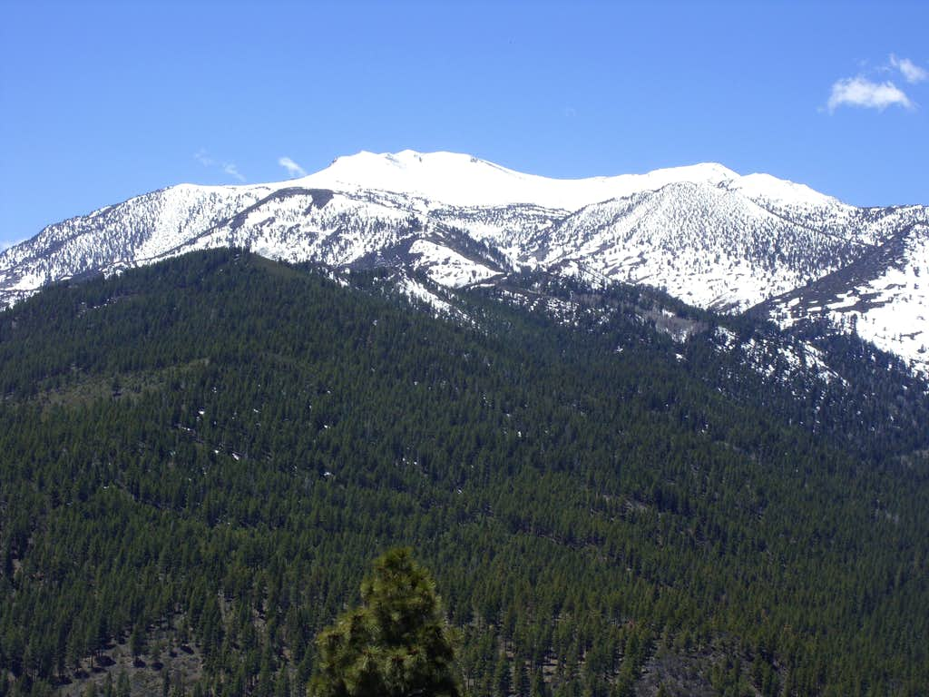 Mount Rose from the summit of Dry Pond Peak