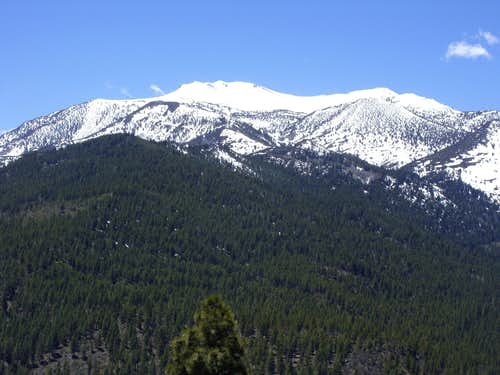Mount Rose from the summit of Point 7219