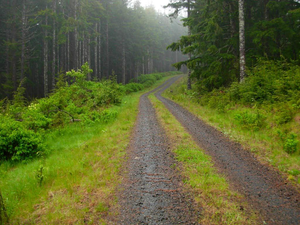 Walville Peak Summit Road