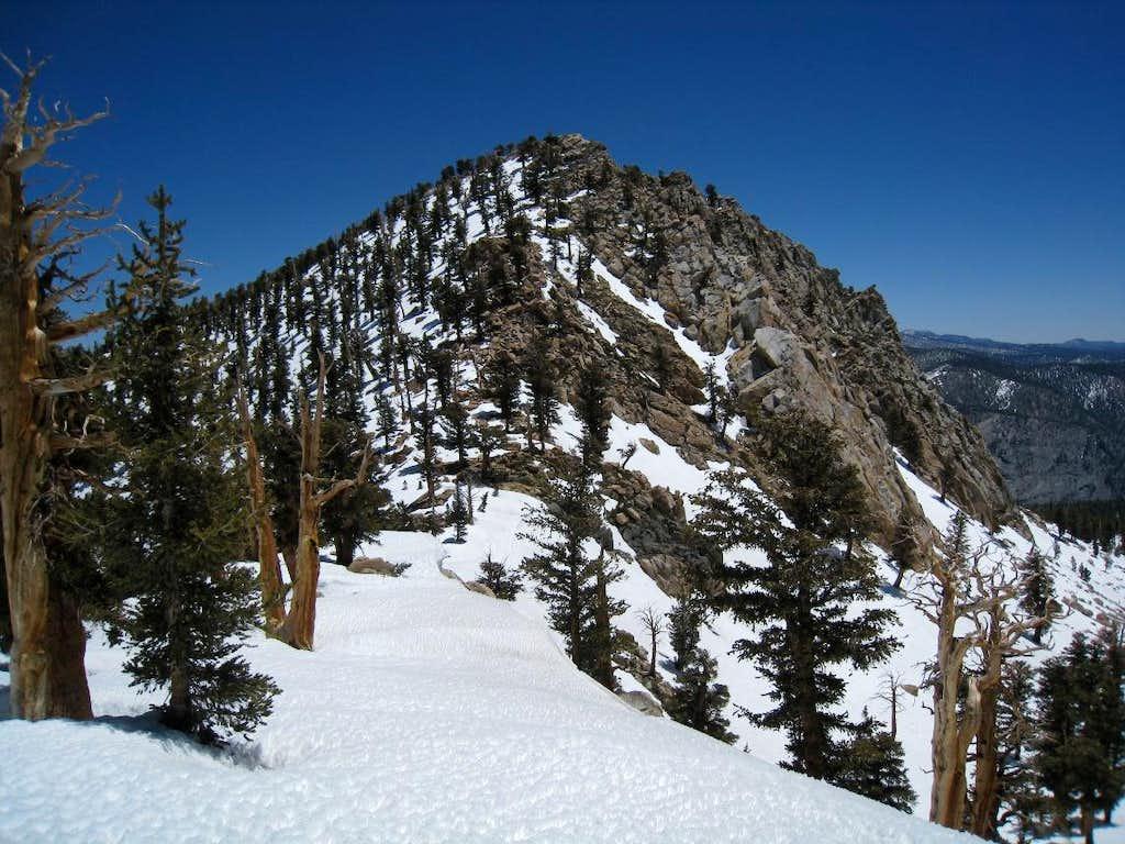 Coyote Peaks West Ridge