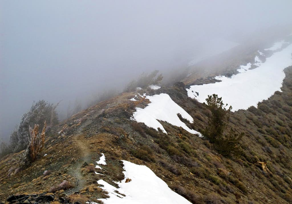 Telescope Peak summit ridge during storm