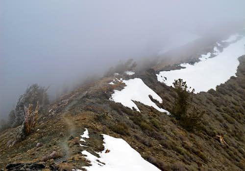 Telescope Peak summit ridge during storm