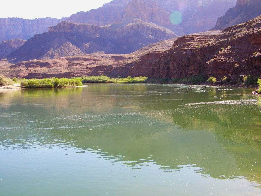 Colorado River from Tanner Beach