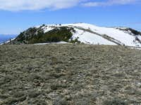 Buckskin Mountain Main Summit