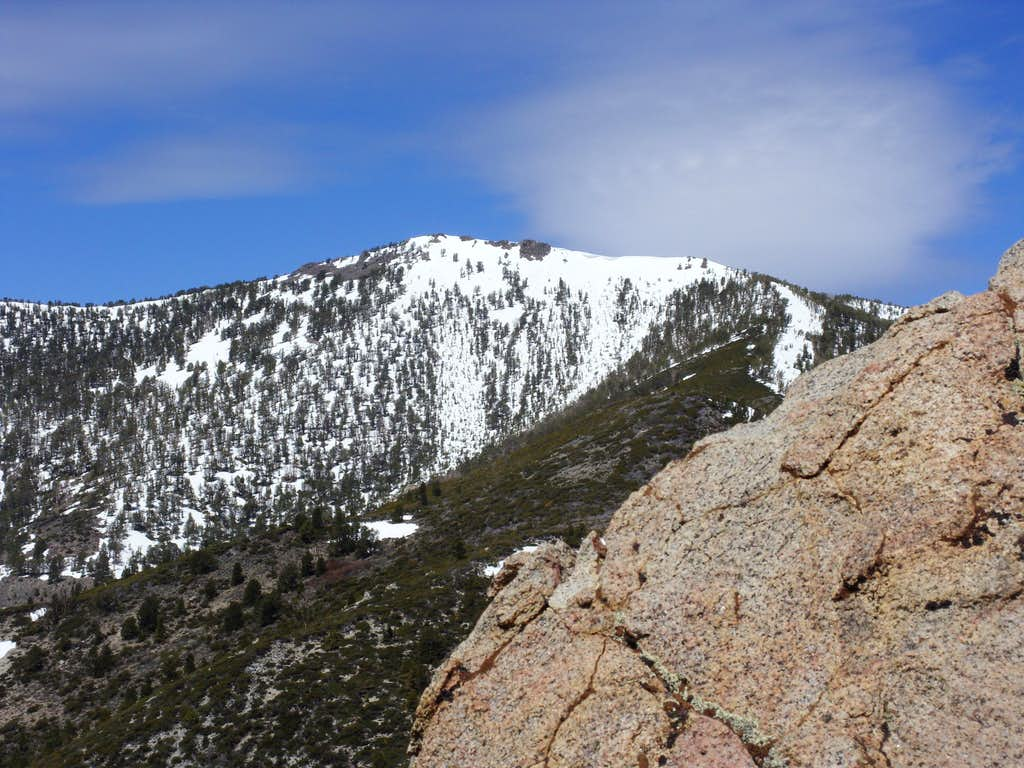 Snowflower Mountain 10,243' from the southeast summit of Alpine Walk Peak