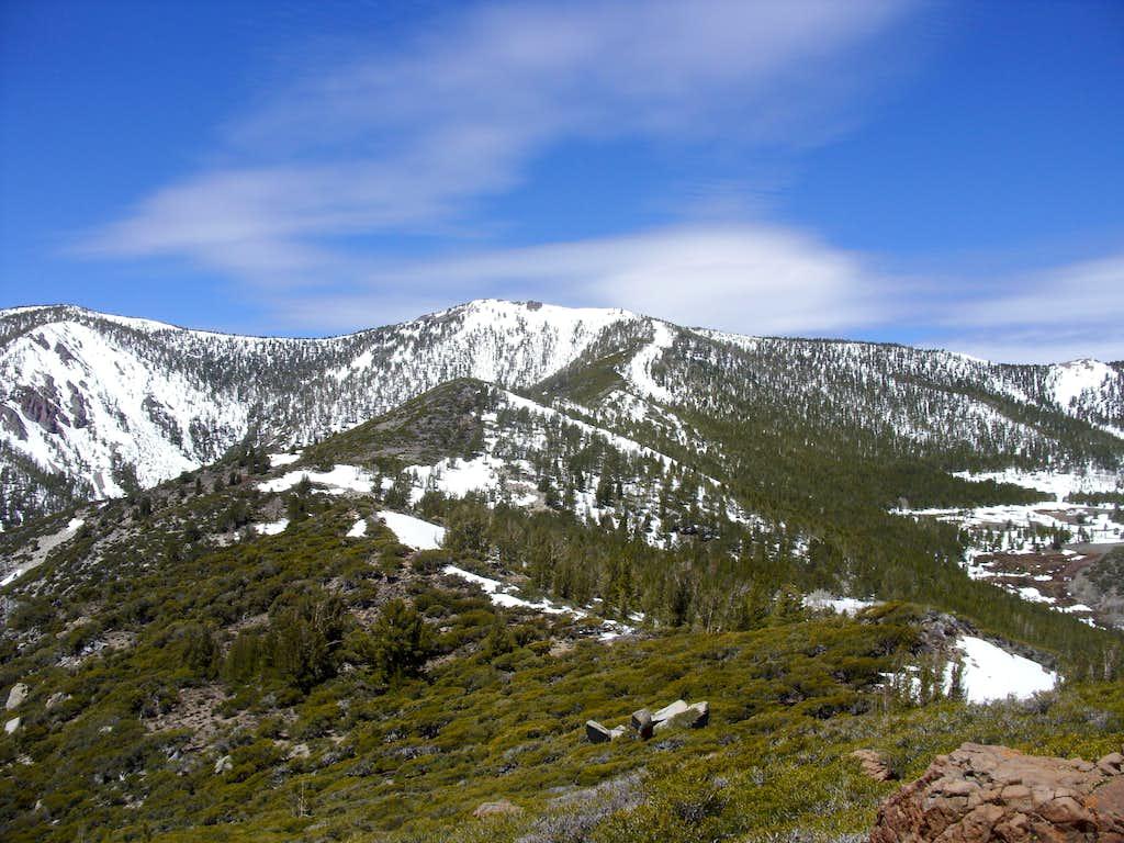 Ridge to Mount Snowflower