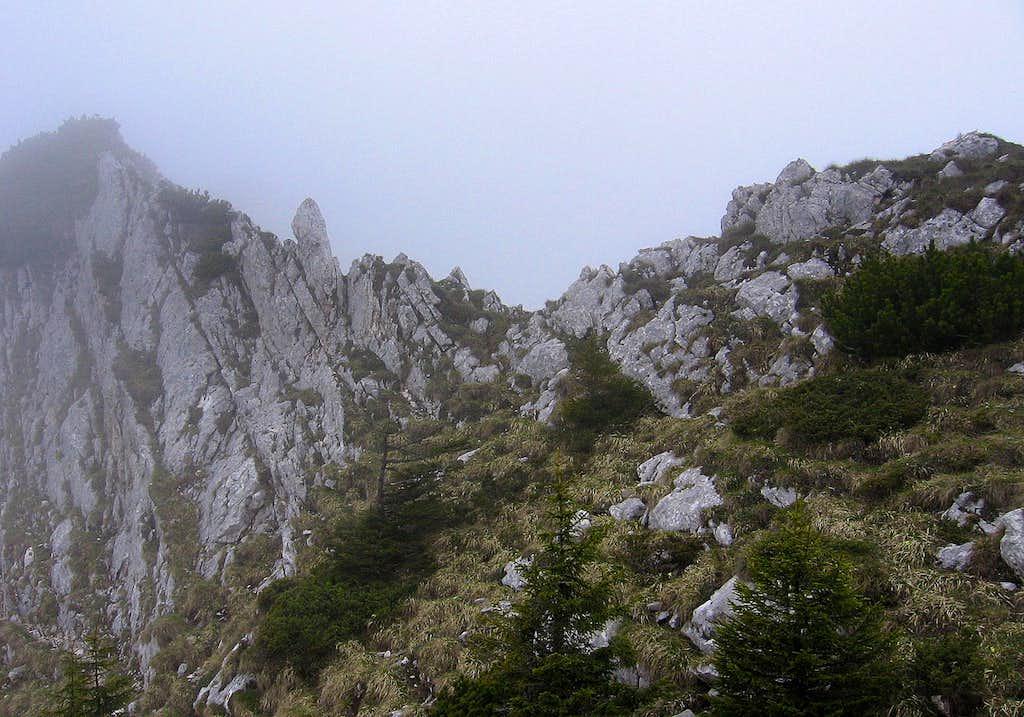 Part of the north ridge (Padina Popii - Turnu).