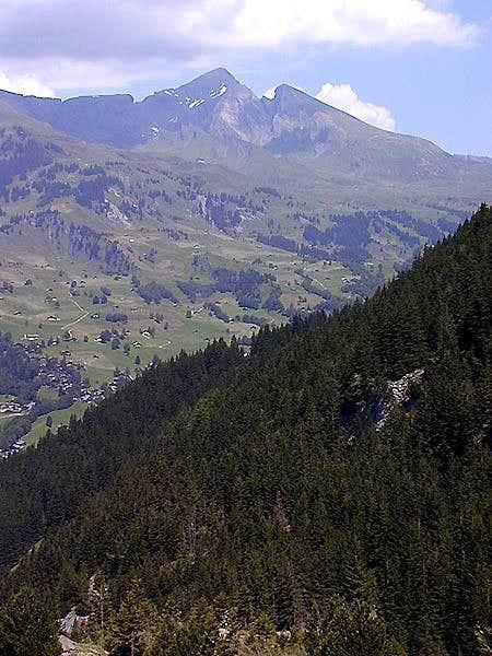 The Schwarzhorn and Gemsberg...