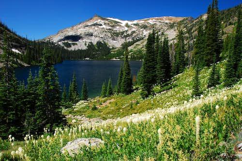 Bass Lake and Beargrass