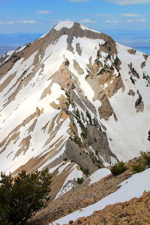 Provo Peak's east ridge.