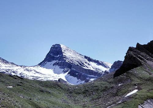 Schwarzhorn from the west
