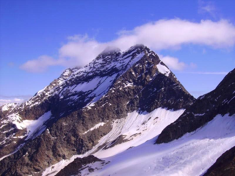 lagginhorn from weissmies west ridge