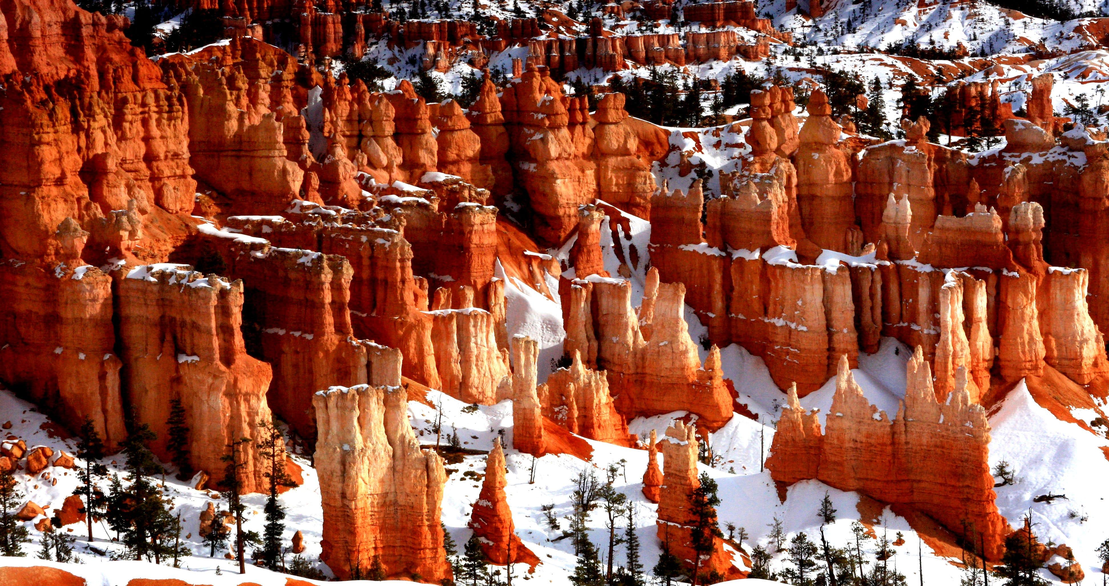 Color in Bryce Canyon