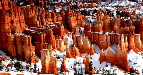 Color in Winter