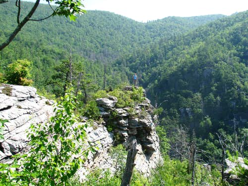 The Sweet Surprise of Linville Gorge