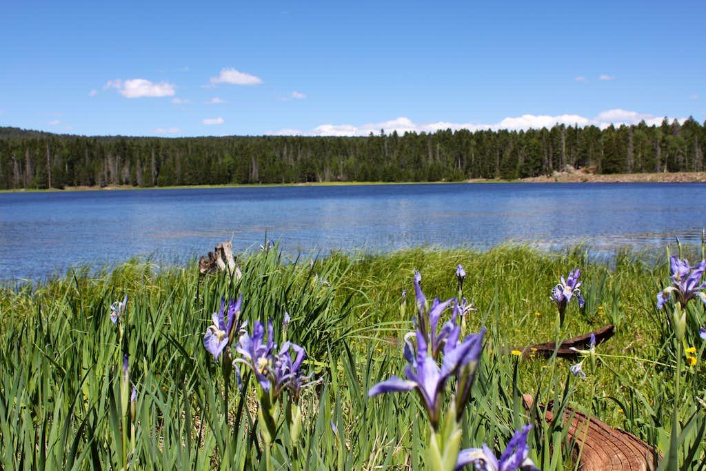 San Gregorio Reservoir