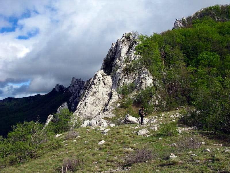 Hiking along Bukovi dolac meadow