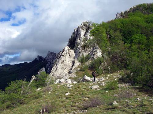 Hiking along Bukovi dolac meadow