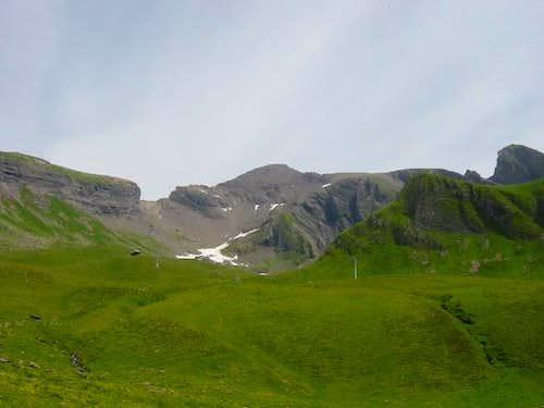 Schwarzhorn from trail. You...