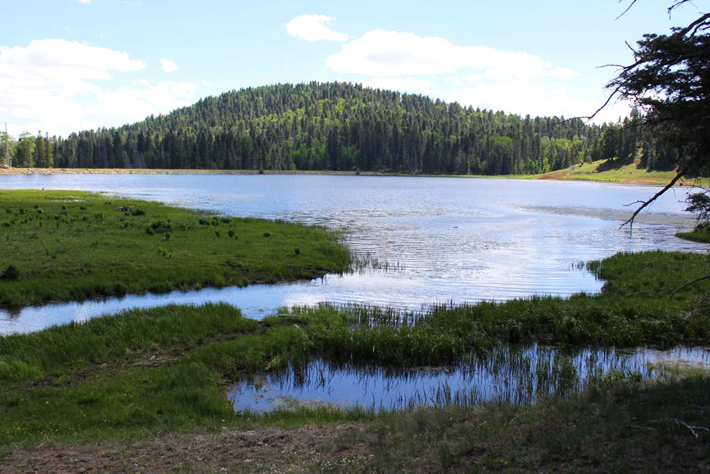 San Pedro Wilderness