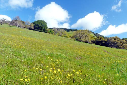 Burdell Mtn. south slope