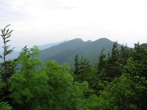 The Black Crest Trail: Disappointments and Discoveries