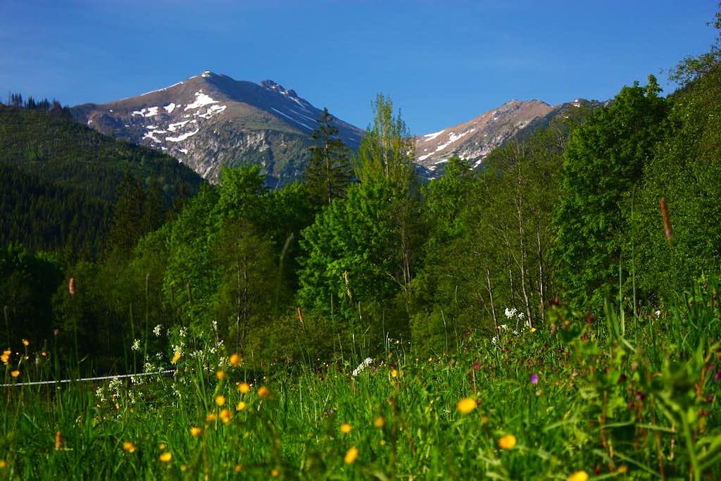 Spring time under Tatras
