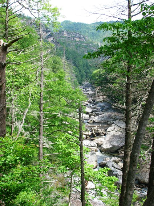 Linville River and Gorge