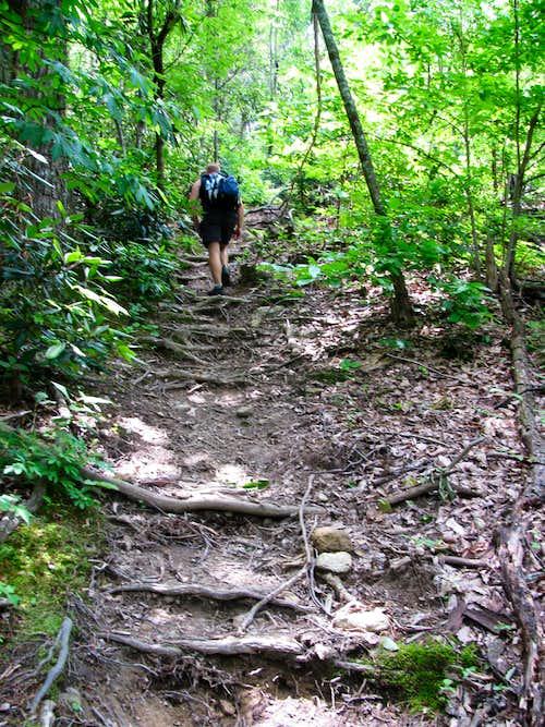 Little Table Rock Trail