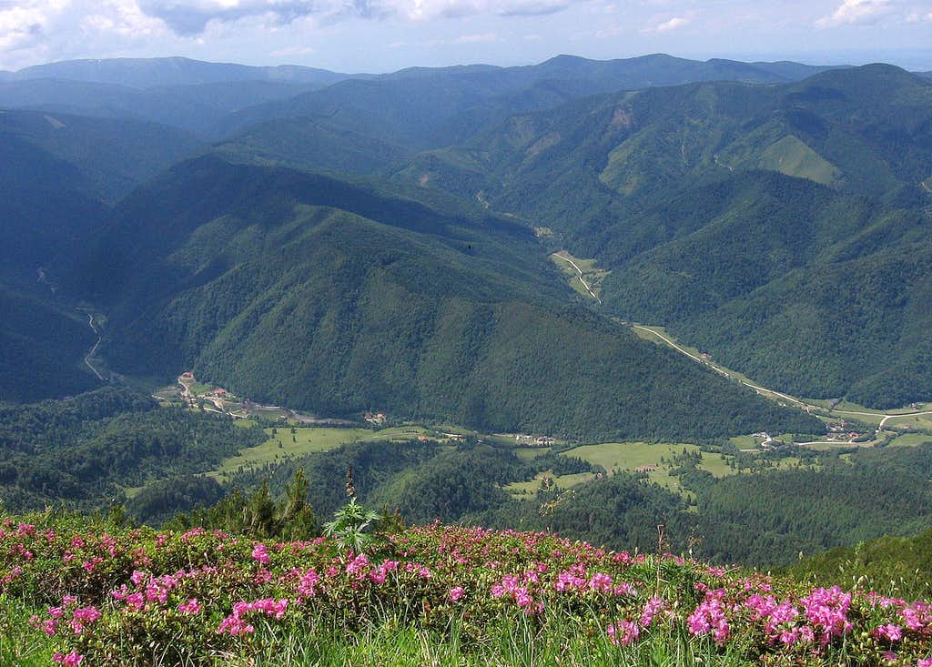 Plaiul Foii from Brâul Ciorânga Mare and the N-E foothills of Făgăraş.