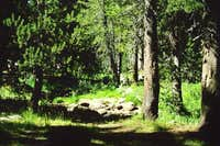 Porcupine Flats campground