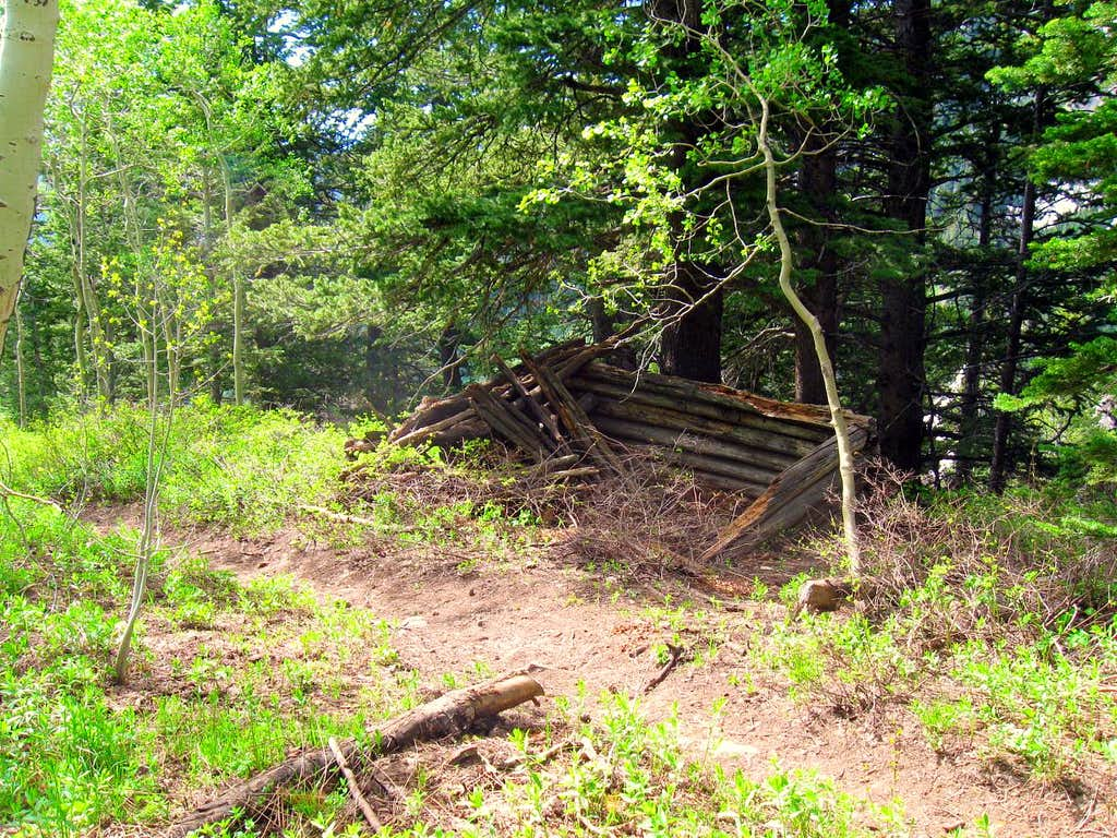 Ruins of old cabin