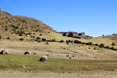 Farm below Illimani