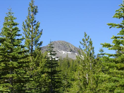 Pickett Peak through the trees
