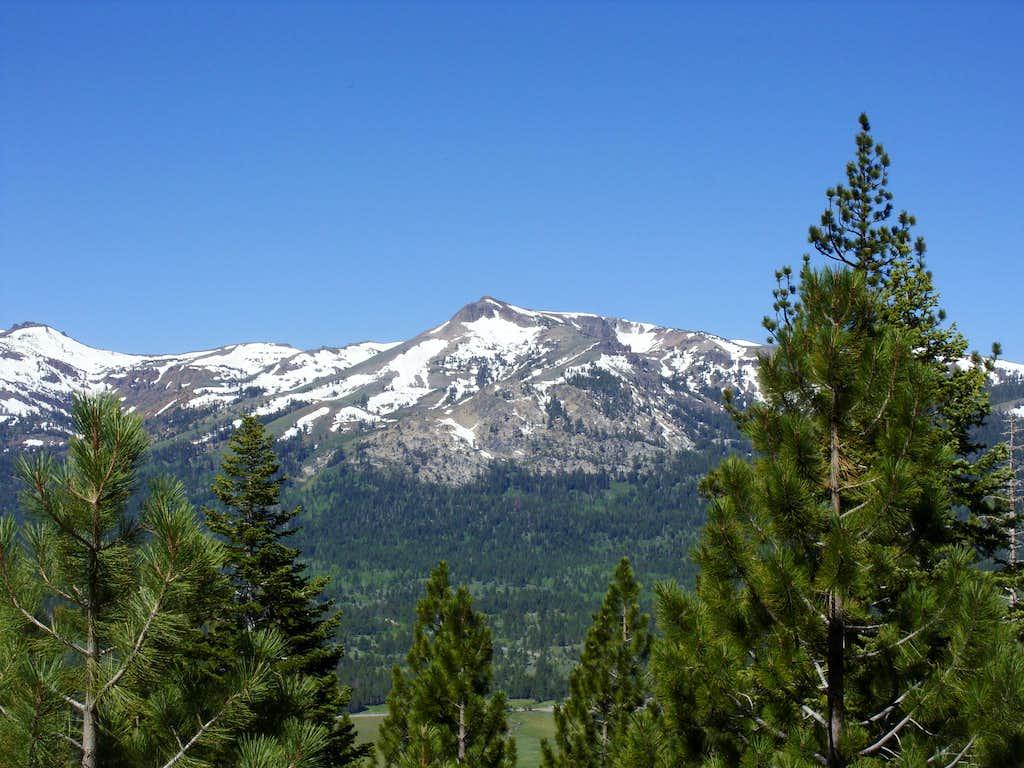 View #1 - Stevens Peak from Pickett Peak Road to the east