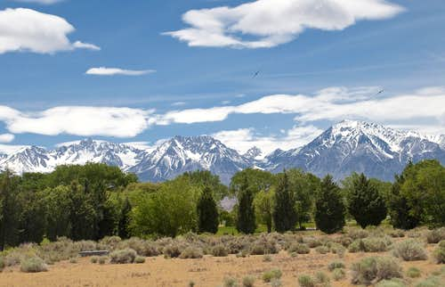 Eastern Sierra near Bishop
