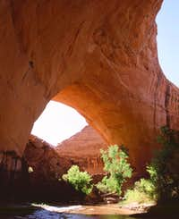 Jacob Hamblin Arch
