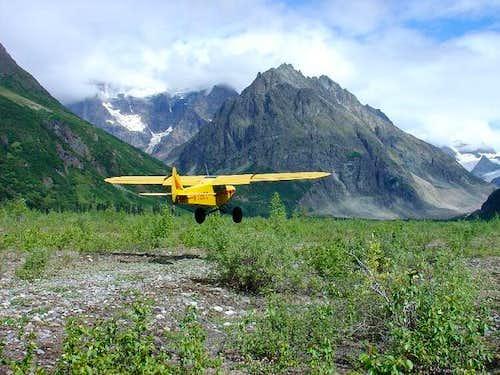 Piper Supercub taking off...