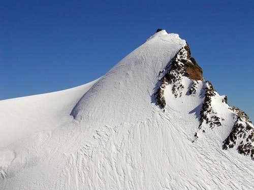Punta Gnifetti. Foto: Bor...