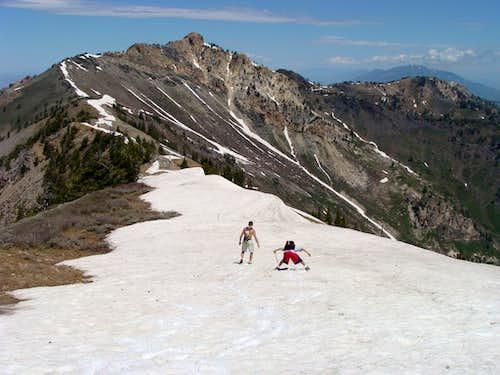 Enroute to Willard Peak
