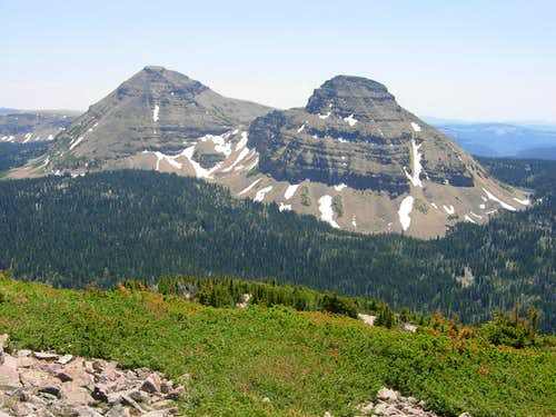 Bald Mountain & Reids Peak