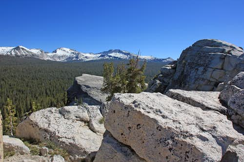 Sierra crest from Lembert Dome