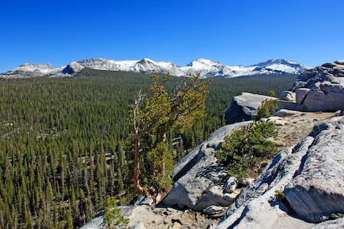 Sierra crest from Lembert Dome