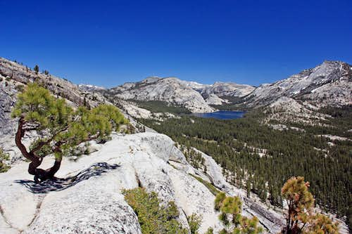 East from above Olmstead Point