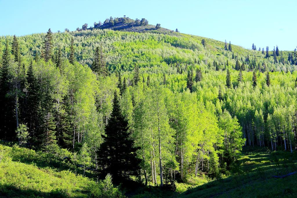 Murdock Peak, upper Millcreek.