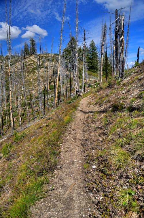 Granite Creek Trail