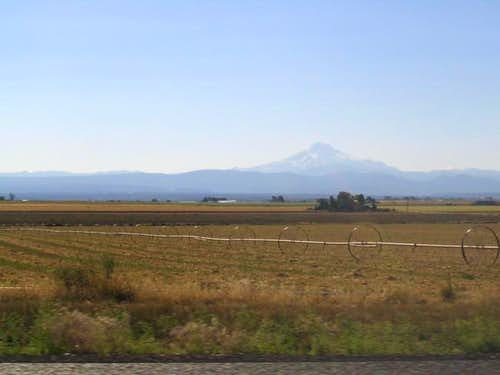 Mt. Jefferson with irrigation...
